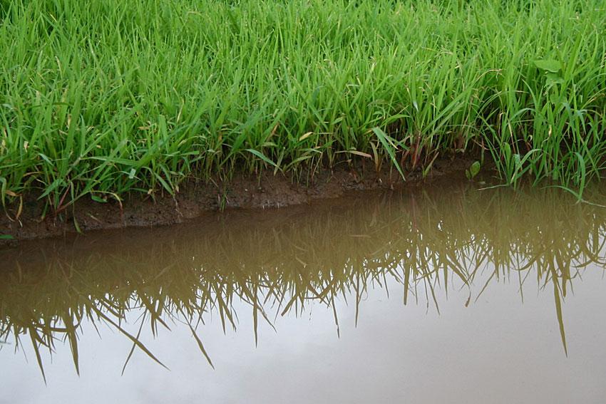 痛饮甘露:如何使用过滤装置获得干净的饮用水及装备对比