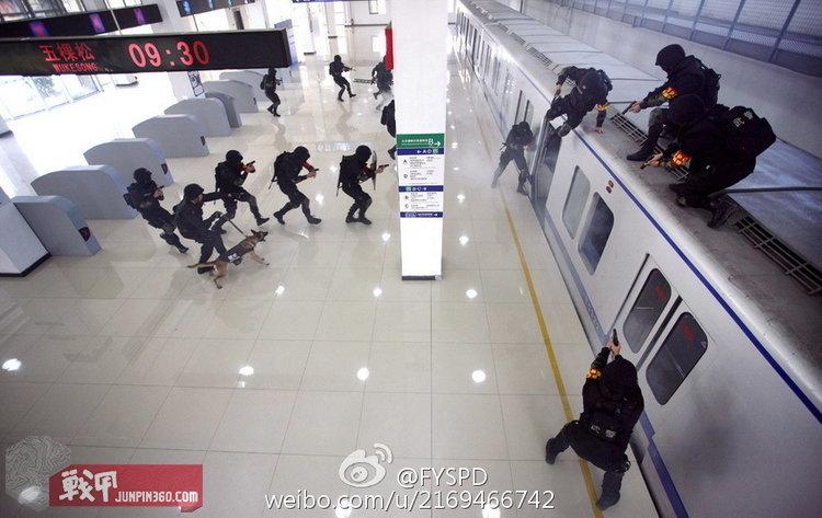 正版香港马报免费资料 8