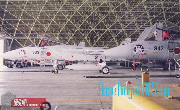 参加战竞的飞机合照二.jpg