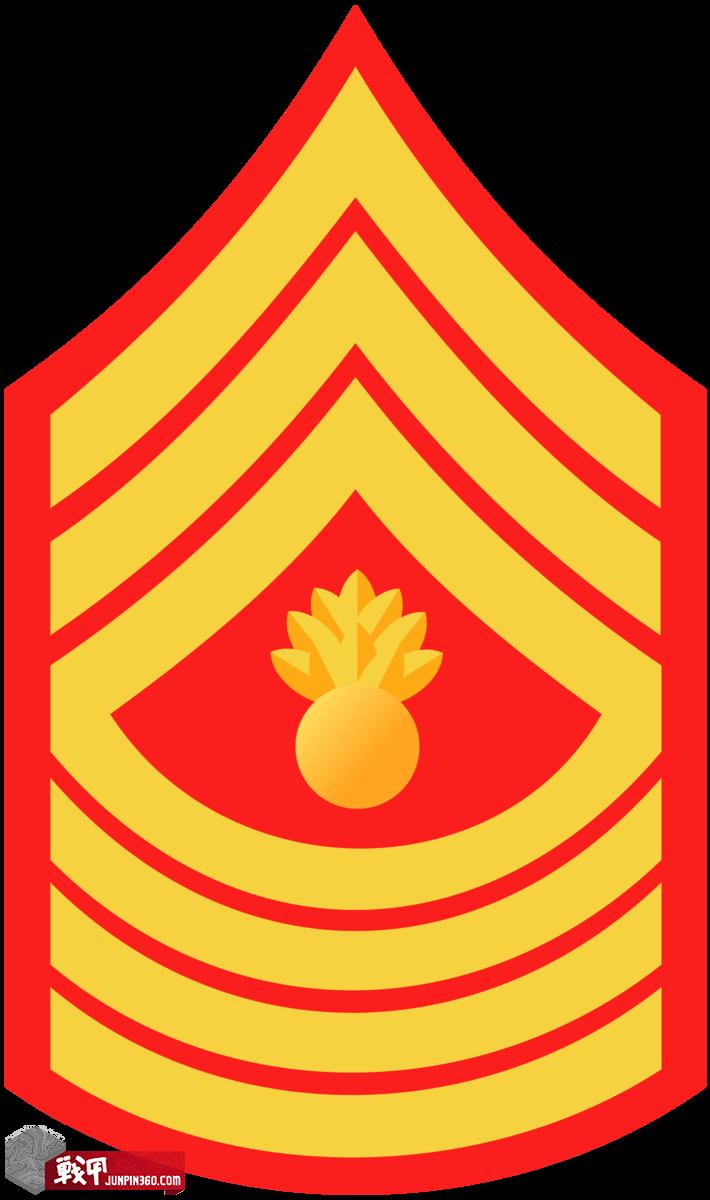Master Gunnery Sergeant-E9.png