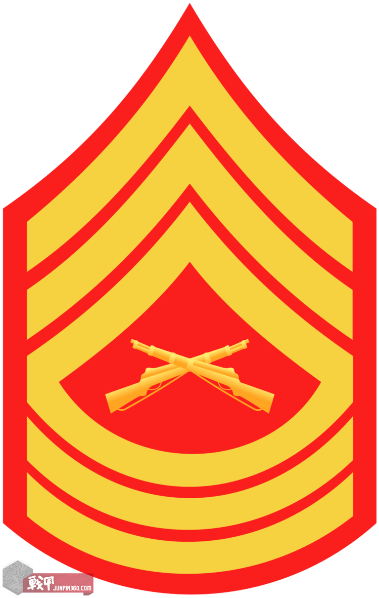 Master  Sergeant-E8.png