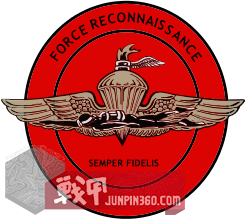 246px-US_Marine_Corps_Force_Reconnaissance_Insignia_svg.png