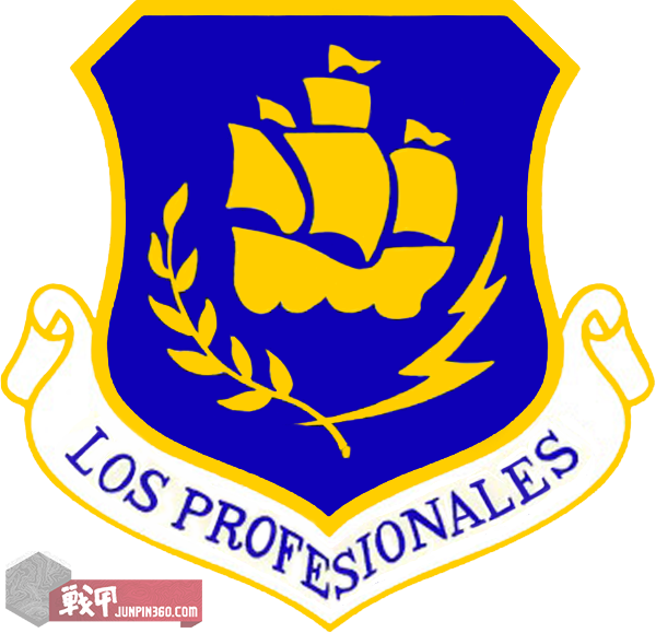 USAF_-_24th_Wing.png