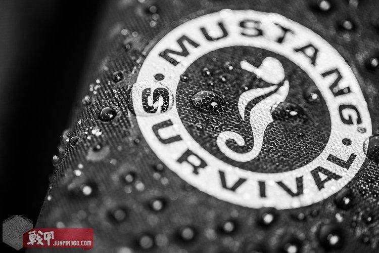 mustang-survival-04.jpg