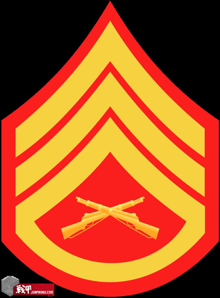 Staff Sergetnt-E6.png